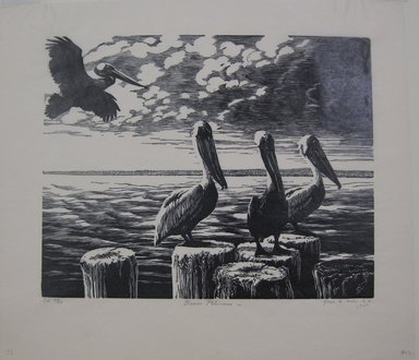 Grace Arnold Albee (American, 1890-1995). Brown Pelicans, 1968. Linocut on wove paper, 7 7/8 x 9 15/16 in. (20 x 25.2 cm). Brooklyn Museum, Gift of the artist, 76.198.72. © Estate of Grace Arnold Albee