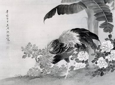 Shen Nanpin. Rooster, Peonies, and Banana Plant, early 18th century. Hanging scroll, ink and color on silk, painting only: 14 x 19 1/4 in. (35.6 x 48.9 cm). Brooklyn Museum, Gift of Mrs. Harold G. Henderson, 77.92.15
