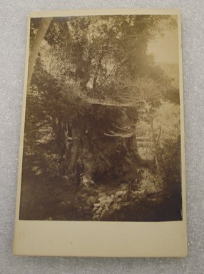 View of Japan, late 19th-early 20th century. Albumen silver photograph mounted on cardboard, with mounting: 4 3/16 x 6 7/16 in. (10.6 x 16.3 cm). Brooklyn Museum, Gift of Matthew Dontzin, 86.256.38