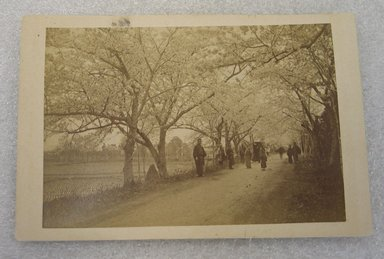 View of Japan, late 19th-early 20th century. Albumen silver photograph mounted on cardboard, with mounting: 4 5/16 x 6 7/16 in. (10.9 x 16.3 cm). Brooklyn Museum, Gift of Matthew Dontzin, 86.256.43