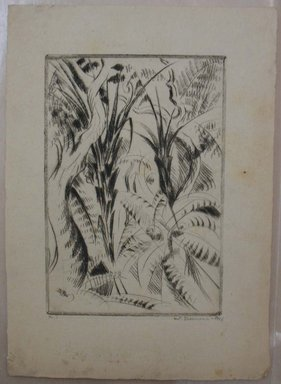 Werner Drewes (American, born Germany, 1899-1984). San Francisco, Fern Trees II, Golden Gate Park, 1926. Drypoint on laid paper, Image: 9 7/16 x 6 1/2 in. (24 x 16.5 cm). Brooklyn Museum, Gift of Henry Ross, 88.173.3. © Estate of Werner Drewes