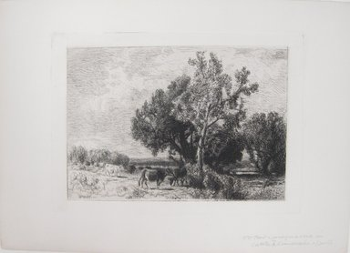 William Hart (American, born Scotland, 1823-1894). Untitled (Cows in Pasture). Etching on simulated laid paper, Image (plate): 5 13/16 x 8 3/16 in. (14.8 x 20.8 cm). Brooklyn Museum, Gift of Dr. Clark S. Marlor, 88.6.5
