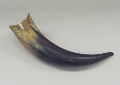 Plains (Native American). Two Tone Horn, 19th century. Cow horn, 3 x 13 in. (7.6 x 33 cm). Brooklyn Museum, Brooklyn Museum Collection, X1126.21. Creative Commons-BY