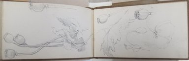 Gertrude M. Young (American, born England, 1862-1930). Sketchbook of Annisquam, Massachusetts Scenery, August 1902. Graphite on paper, 4 x 7 1/16 x 7/16 in. (10.2 x 17.9 x 1.1 cm). Brooklyn Museum, Brooklyn Museum Collection, X1192.6