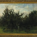 An Apple Orchard