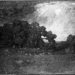 Autumn Oaks, Forest of Fontainebleau