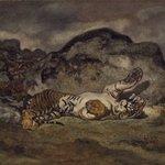 Rolling Tiger (Tigre se roulant)