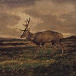 Stag Walking (Cerf marchant)