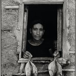 Cuatro pescaditos (Four Fishes), Juchitán, Oaxaca