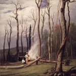 Spring--Burning Trees in a Girdled Clearing, Western Scene