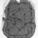 Upholstery Fragment from Hunzinger Chair