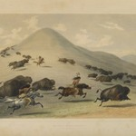 Buffalo Hunt Chase