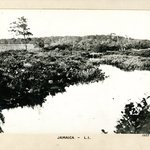 Entrance of Smiths Brook to Jamaica Pond