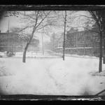 Borough Hall Park, Brooklyn