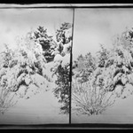 Snow Scene, Prospect Park, Brooklyn