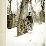 Wheel Grown into Tree, Yaphank, Long Island