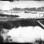 Creek, Patchogue, Long Island