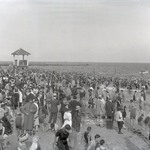 Coney Island Bathers