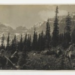 [Untitled] (Horseback Rider near Forest in the Rocky Mountains)