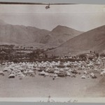 A Photogragh of a Photograph of a Royal Tent Encampment, One of 274 Vintage Photographs