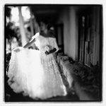 Hacienda Bride