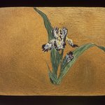 Small Card Decorated with Iris