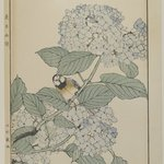 [Untitled] (Bird with Hydrangea)
