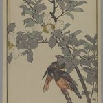 [Untitled] (Two Birds with White Flowers)