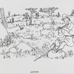 [Untitled] (Shepherd)