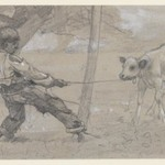 "Study for ""The Unruly Calf"""