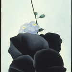 Black Pansy &amp; Forget-Me-Nots (Pansy)