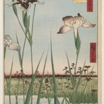 Horikiri Iris Garden (Horikiri no Hanashobu), No. 64 from One Hundred Famous Views of Edo