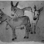 Three Donkeys