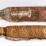 Cat Mummy in Cartonnage