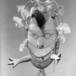 Mask of a Valley Ptarmigan