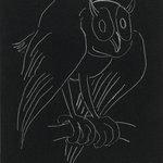 Night Series: The Owl