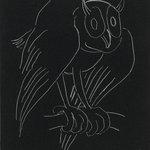 Night Series: The Owl