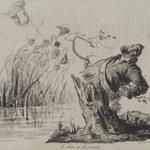 The Oak and the Reeds (Le chêne et les roseaux)