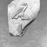 Fragment with Owl Outlined
