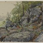 Woodland Boulders
