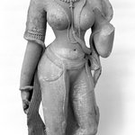Female Torso