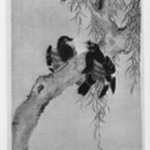 Three Myna Birds in a Willow Tree