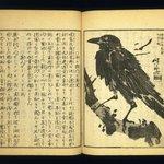 Kyosai Kadan Nihen (Pictorial Accounts of Kyosai), Part II, Volume 4