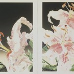 Rubrum Lily Diptych