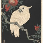 White Parrot and Pomegranate