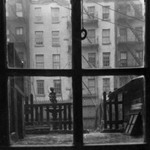 [Untitled] (Window Pane with View of City Yard)
