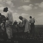 [Untitled] (Workers in Tennessee)
