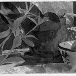 Plant, Bowl, Mirror