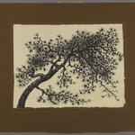 Untitled (Branch of Tree)