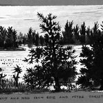Untitled (Lake Scene with Tress)